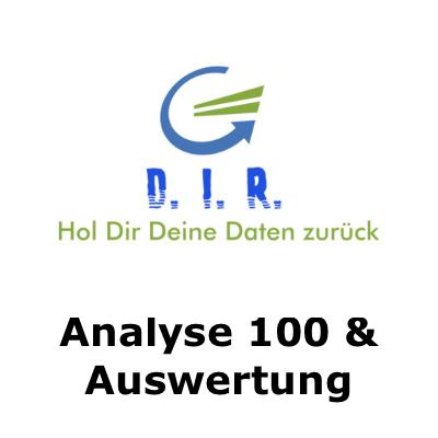 Analyse und Auswertung 100